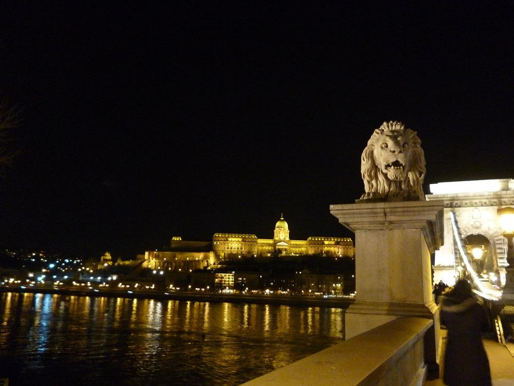 画像9 ライオンと夜景