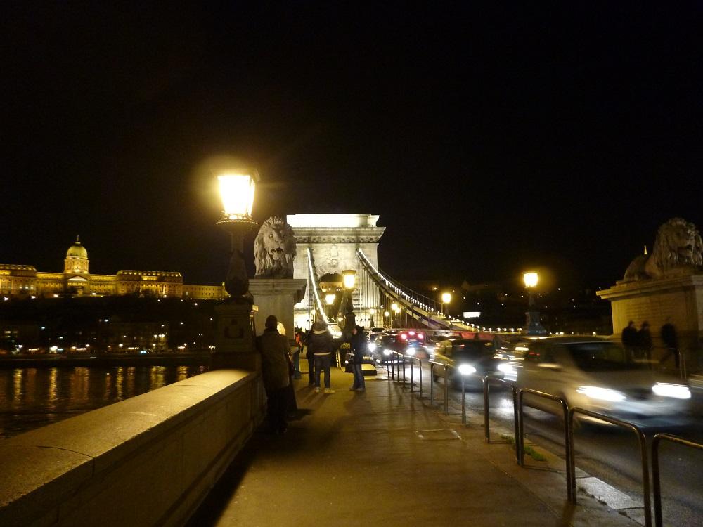 画像8 くさり橋 夜景