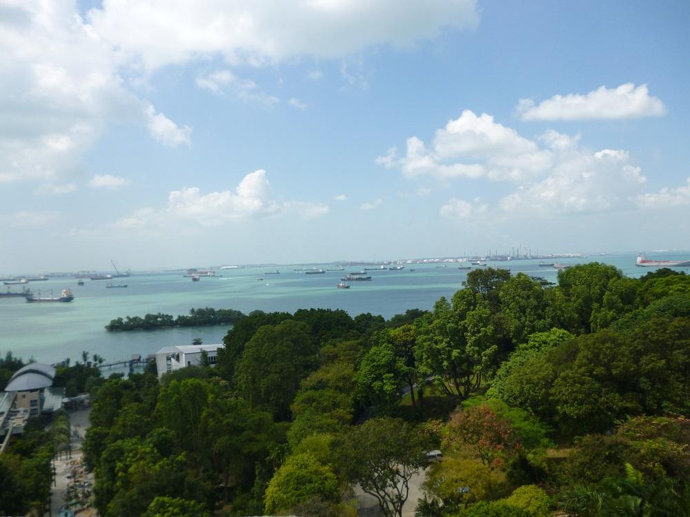 画像10 マーライオン・タワーからの景色