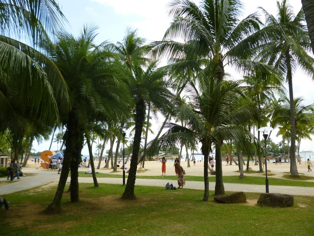 画像12 シロソビーチ